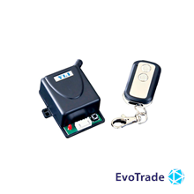 Yli Electronic WBK-400-2-24 - Радиоконтроллер
